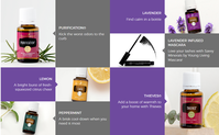 "Bild: Screenshot der Webseite ""youngliving.com"""