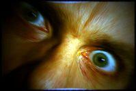 Verrückt: Tweets sind Indikator für Psychopathie. Bild: flickr.com/rutty