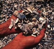 Der Handel mit Elfenbein blüht derzeit auf © John E. Newby / WWF-Canon