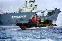 Bild: Greenpeace e.V.
