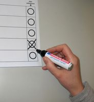 Wähler (Symbobild)
