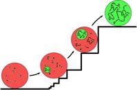 Der Kreis infizierter Personen (grün dargestellt) innerhalb einer Gesamtbevölkerung (großer roter Kreis) kann sprunghaft und damit unkontrollierbar ansteigen. Manchmal folgt der Wachstumsprozess einer Teufelstreppe. Quelle: Grafik: MPIDS (idw)