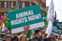 """Laut, bunt und mit klarer Forderung zogen die Demonstranten durch Berlin. Bild: """"obs/Tierrechtsaktivistenbündnis/Karsten Günter"""""""