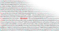 G DATA Forscher gingen zunächst von einer fehlerhaften Datei aus.