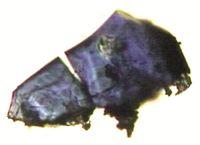 Kristalle von (Mg,Fe)2SiO4 - Ringwoodit, hergestellt im Hochdrucklabor des Bayerischen Geoinstituts Quelle: Foto: Prof. Dr. Dan Frost, Bayerisches Geoinstitut, Universität Bayreuth; zur Veröffentlichung frei. (idw)