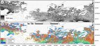 Unterschiedliche Karten der Insel Navarino erstellt auf Grundlage von WorldView-2-Bildern Quelle: © Remote Sensing of Environment (Soto et al. 2017) (idw)