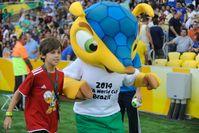 Fuleco, das offizielle Maskottchen der WM 2014 in Brasilien.