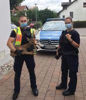 Originalbild - Bundespolizisten mit verletztem Rehkitz Bild: Polizei