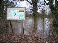 Flussauenlandschaft im Nationalpark Unteres Odertal