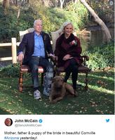 """John McCain am 22. November auf Twitter. Diesmal ist der linke Fuß """"verletzt"""" und nicht wie zwei Wochen vorher der rechte."""