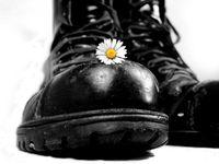 Springerstiefel und Blume