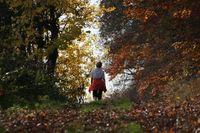Bild: Michael Heimann / pixelio.de