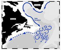 Schema der Tiefenzirkulation im westlichen Nordatlantik: Östlich von Neufundland wird der tiefe Randstrom durch Wirbel aufgebrochen und das nach Süden strömende Tiefenwasser im Ozeaninneren verteilt. Grafik: IFM-GEOMAR