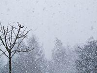 Schneesturm (Symbolbild)