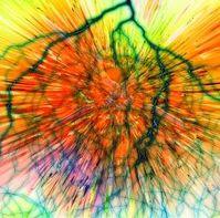 Animierter Blick ins Gehirn: Neuronen leben länger. Bild: pixelio.de, Altmann