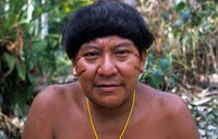 Davi Kopenawa, Yanomami-Sprecher und Schamane, hat sich gegen Napoleon Chagnons neues Buch 'Edle Wilde' ausgesprochen. Bild: Survival