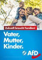 Ein AfD Wahlplakat (2019)