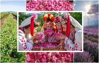 Bild: Deutsch-Bulgarische Industrie- und Handelskammer | AHK Fotograf: BUBSPA