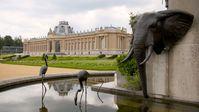 Das Königliche Museum für Zentralafrika (KMZA) im belgischen Tervuren  Bild: ZDF/kobalt production Fotograf: Florian Henke