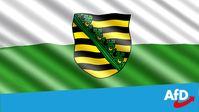 Die AfD-Sachsen zieht aktuell mit 38 Abgeordneten in das am 1. Sepember 2019 neu gewählte Landesparlament.