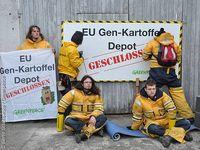 Bild: Bente Stachowske / Greenpeace