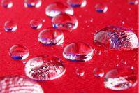 Hydrophobe Wirkung der Veredlungslösung. Bild: © K. Dobberke für Fraunhofer ISC (idw)