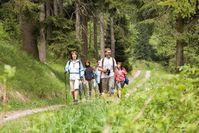 Bild: Wandern im Erzgebirgswald - Tourismusverband Erzgebirge e.V.