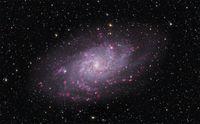 Bild des Dreiecksnebels M 33. Bei dieser Galaxie sehen die Astronomen direkt von oben auf die Scheibe mit ihren Spiralarmen. Die rosa Regionen enthalten neu geborene Sterne. Bild: Thomas V. Davis (http://tvdavisastropics.com) (idw)