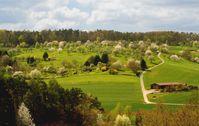 Streuobstwiese im Frühling mit blühenden Bäumen bei Tübingen