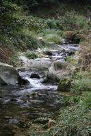 Der Landnutzungswandel ist die größte Bedrohung für die Artenvielfalt in Fließgewässern. Quelle: © Senckenberg (idw)