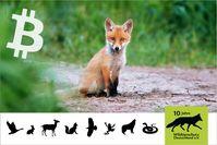 Bild: Wildtierschutz Deutschland e.V. Fotograf: René Schleichardt