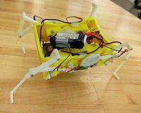 Roboter passt sich flexibel an das Terrain an.