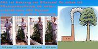 CO2 ist Nahrung der Pflanzen! Zu sehen ist Pflanzenwachstum bei unterschiedlichen CO2 Konzentrationen im selben Zeitraum (Symbolbild)
