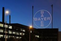 Das Bayer-Kreuz bei Nacht. Bild: Bayer AG