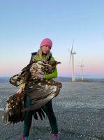Windräder töten Vögel und machen mit Infraschall auch Menschen krank (Symbolbild)