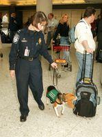 US Customs and Border Protection: Kontrolle von Reisegepäck bei der Ankunft