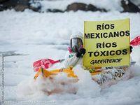 Bild: Ivan Castaneira / Greenpeace