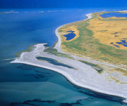 Ostsee bei Rügen. © WWF