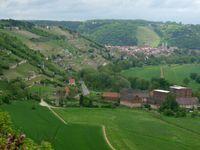 Weinanbau bei Freyburg
