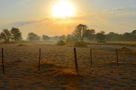 Sonnenaufgang auf einer Farm in Namibia (2014)