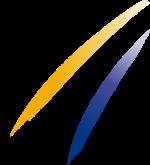 Logo - Fédération Internationale de Ski