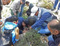 Exkursion und Aktionen der Workshop-Teilnehmer im Yarmouk Nature Reserve Quelle: DAI (idw)