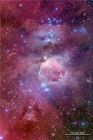 Der berühmte Große Orionnebel, auch Messier 42 genannt. Seine hellsten Partien (in Bildmitte) sind auch mit freiem Auge zu sehen. Quelle: (Copyright: Jon Christensen) (idw)