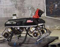 Neuer Vierbeiner: Roboter-Hund für Spezialeinsätze.