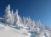 Diesen Winter ist es kalt, schneereich und einfach Winter (Symbolbild)