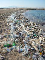 Grober Plastikmüll am Ufer