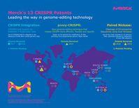 Merck erhält erstes US-Patent für optimiertes CRISPR-Genomeditierungsverfahren