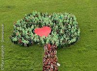600 Greenpeace-Aktivisten formen ein Herz für mehr Waldschutz in Deutschland Bild: Paul Langrock / Greenpeace