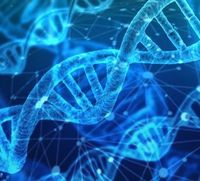 DNA: Zusammenhalt doch komplett anders.