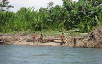 Dutzende Male kam es in den letzten Jahren zum Aufeinandertreffen von unkontaktierten Mashco-Piro-Indianern, Touristen und Siedlern. (Foto von 2011) © G. Galli/www.survivalinternational.de